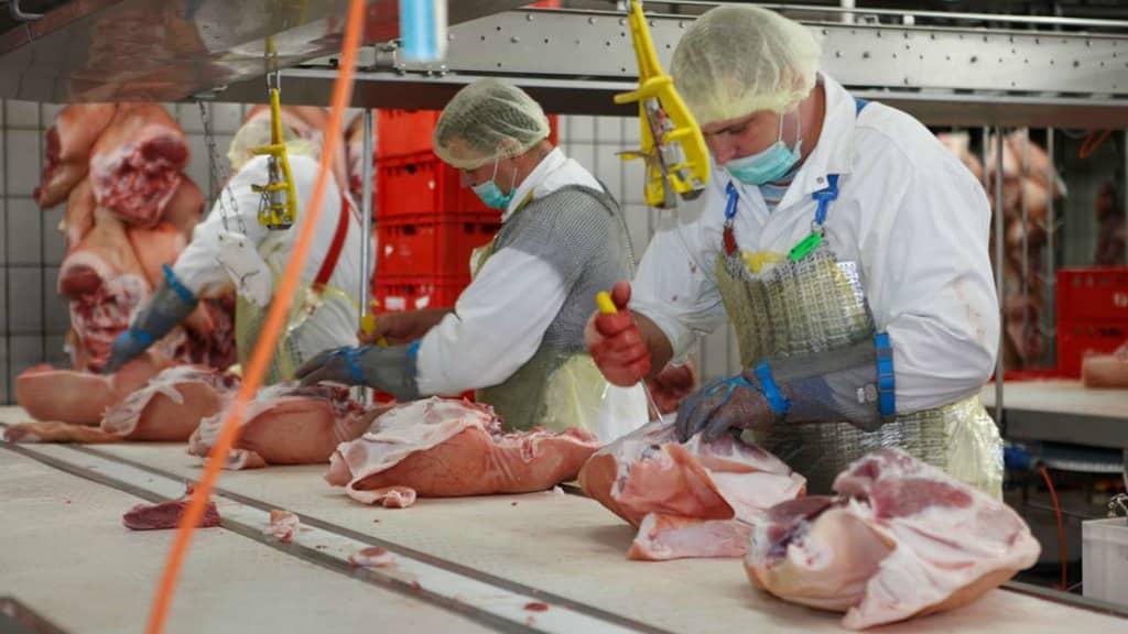 Fleischverwertung