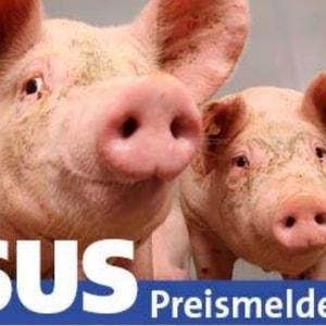SUS-Preismelder