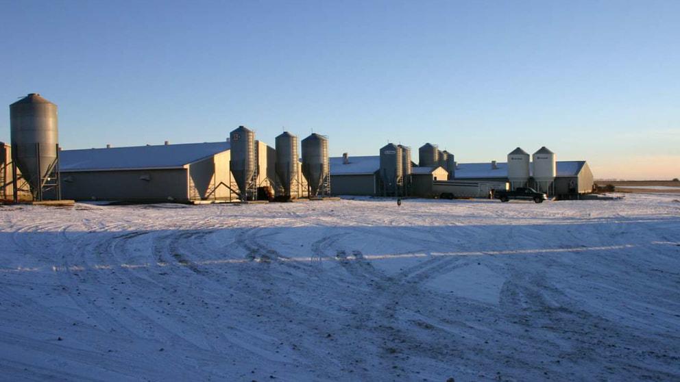 US Farm