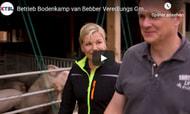 BMEL zeichnet Betrieb Bodenkamp/van Bebber aus (Video)