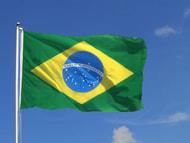 Brasilianer exportieren weniger Schweinefleisch