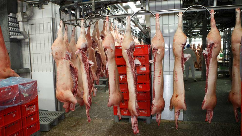 Fleischverarbeitung